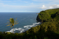 Pololu Valley Viewpoint and Surroundings