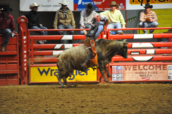 Rodeo 212 - Watching the Bull Rider