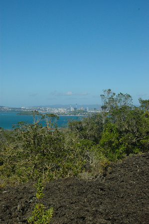 Auckland and Solidified Lava Flow