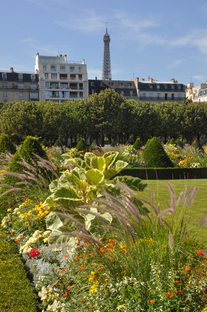 Flowers Garden and Eiffel Tower 2
