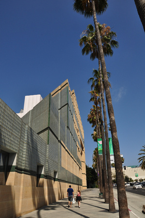 LACMA Facade and Palm Trees 2
